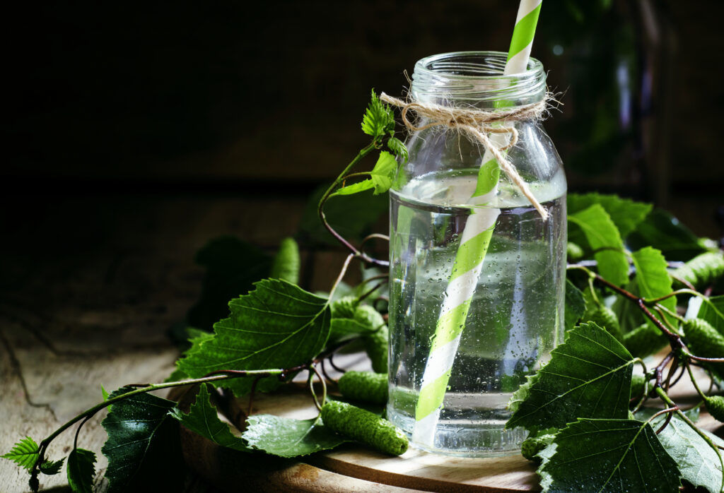 What is Birch Water?